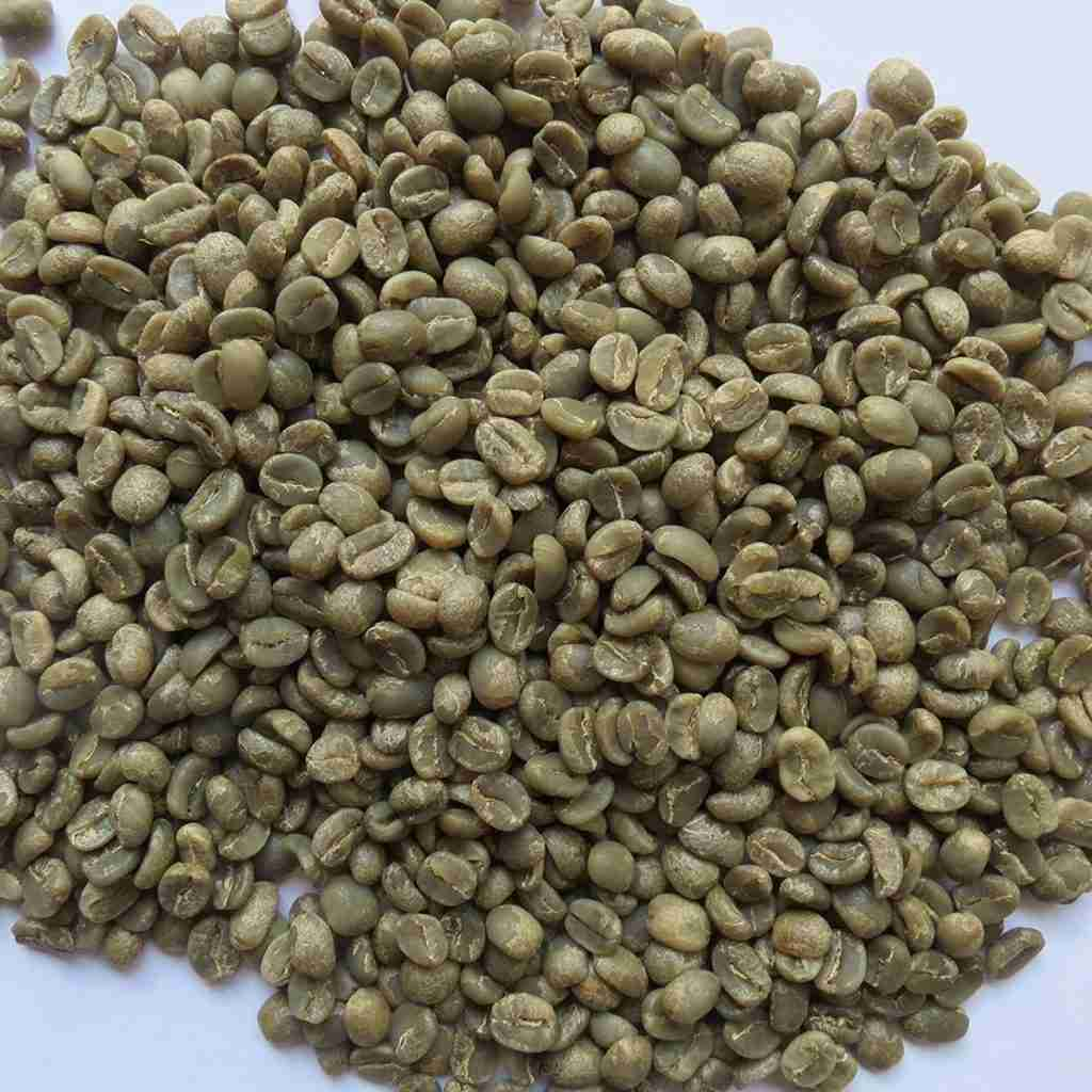 A pile of green coffee, ready to be roasted.