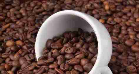 Medium Roast coffee beans in a white cup.